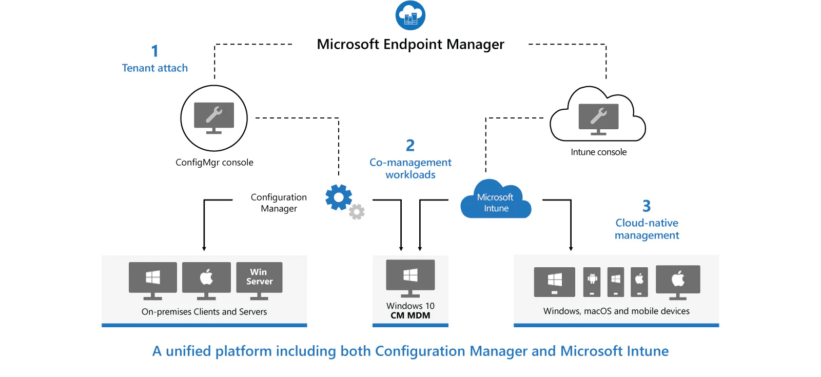Esquema de Microsoft Endpoint